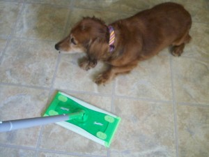 2nd-sd-card-swiffer-1-29-09-003