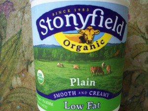 blog-stoneyfield-yogurt-salad-etc-8-24-09-002