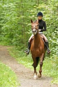 ladyridinghorse_v2